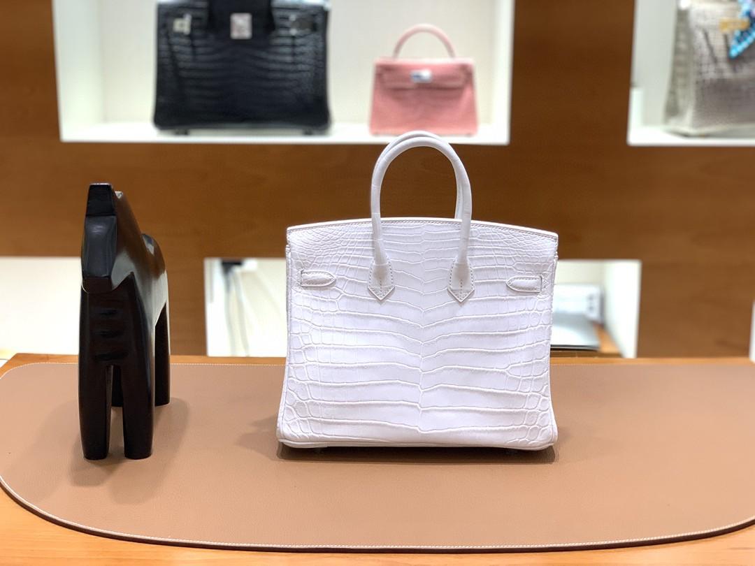 Hermès(爱马仕)Birkin 铂金包 雾面尼罗鳄 纯白 银扣 25cm